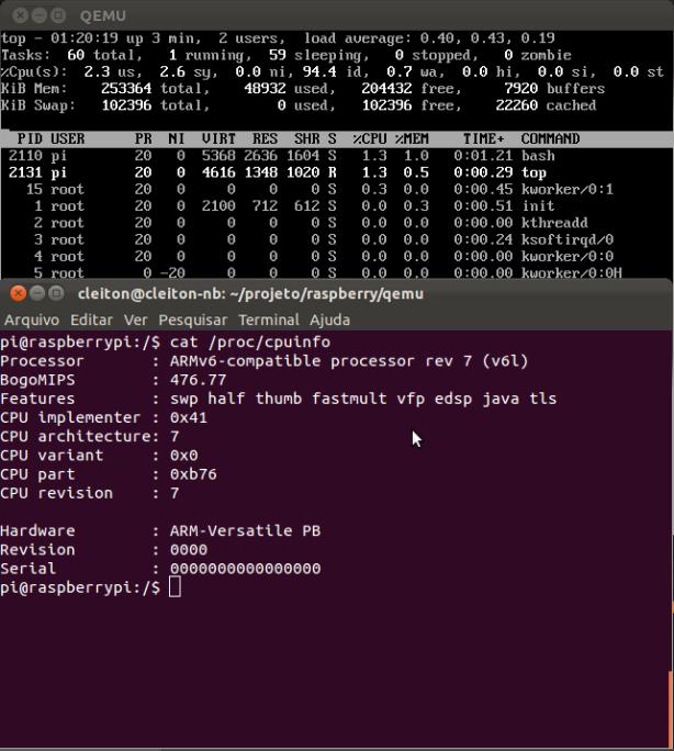 Qemu-raspberry-login-terminal
