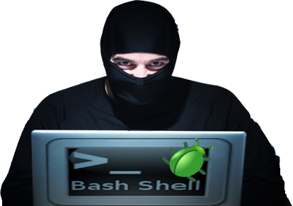 bug_bash_shellshock_cleitonbueno